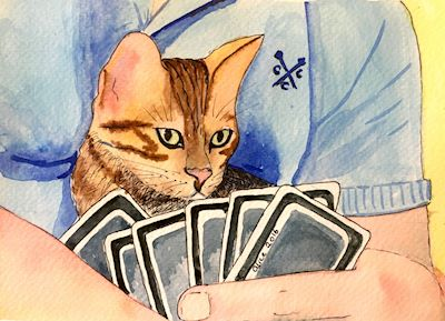 5261 Cat at cards